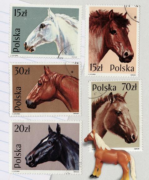 SET_Horses_1