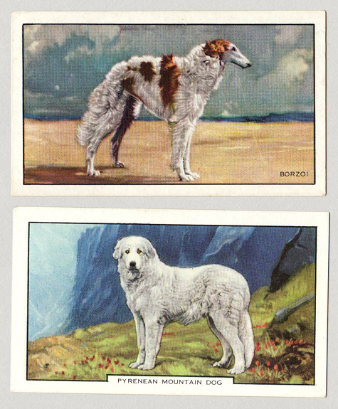 SET_cigarettecards_1