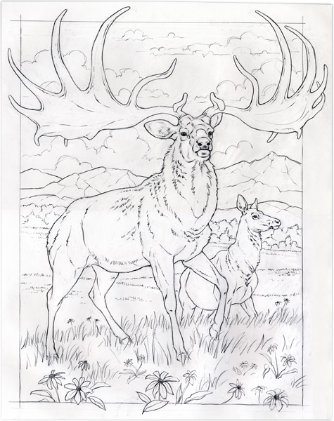 Animal Coloring Pages National Geographic Coloring Page Books