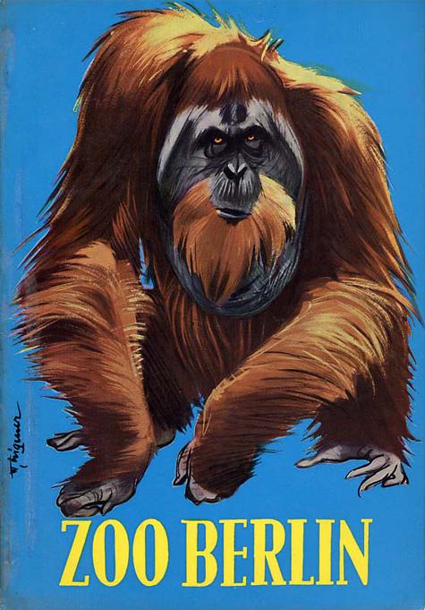Berlin Zoo, Orangutan