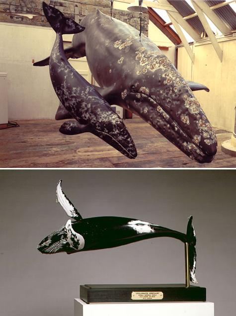 Ahrens-whales