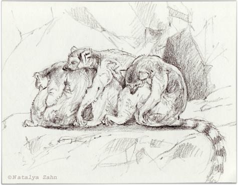 Zoo-lemurs