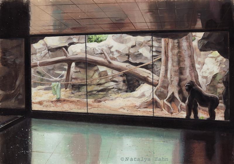 Franklin Park Zoo gorilla exhibit