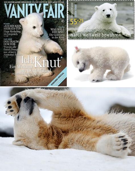 Knut the polar bear merchandise