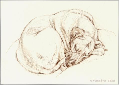Oscar-sleeps3-SM