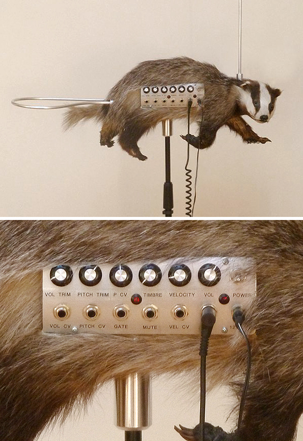Badgermin1