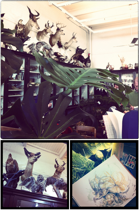RISD, SCBWI, RISPCA, Edna Lawrence Nature Lab