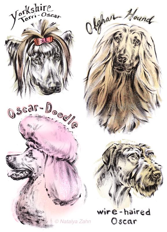 Rhodesian Ridgeback Oscar wears dog wigs
