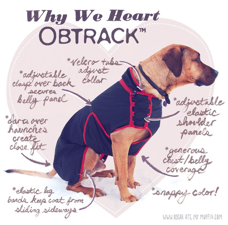 Obtrack Skrylle dog coat