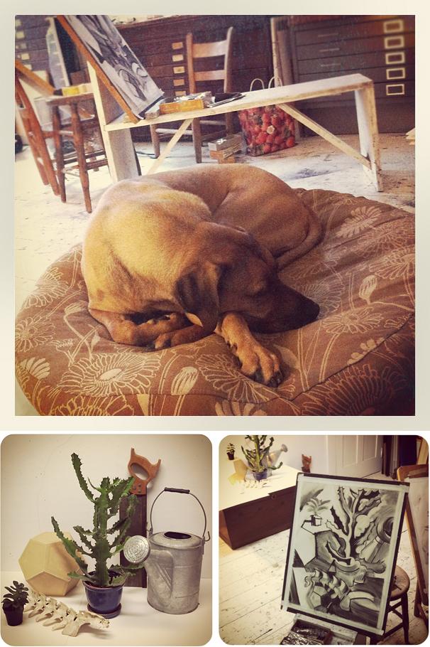 Rhodesian Ridgeback, Oscar dog, Vermont studio