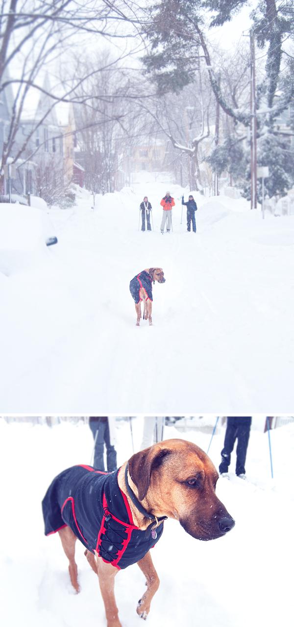 O-Snow-skiers-COMP