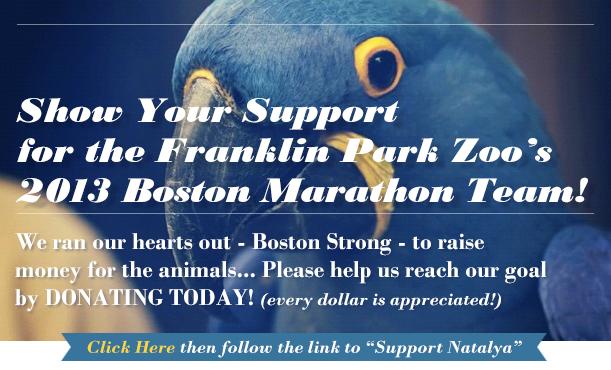 2013 Franklin Park Zoo Boston Marathon Team
