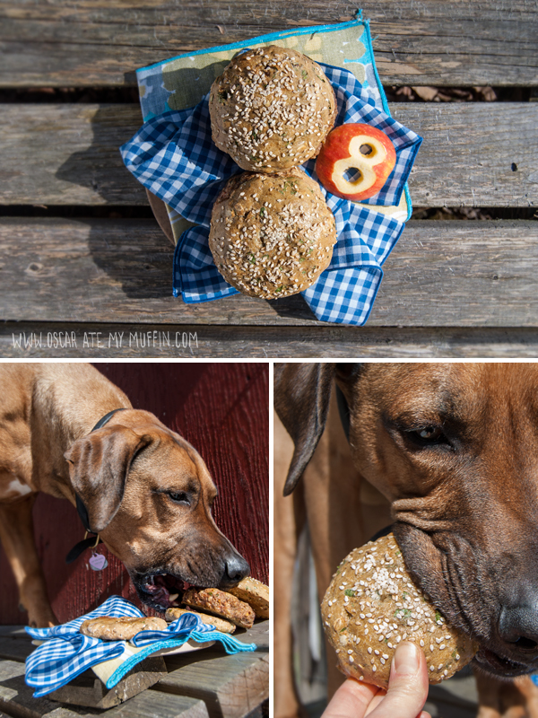 Birthday Hamburgers for a Rhodesian Ridgeback dog
