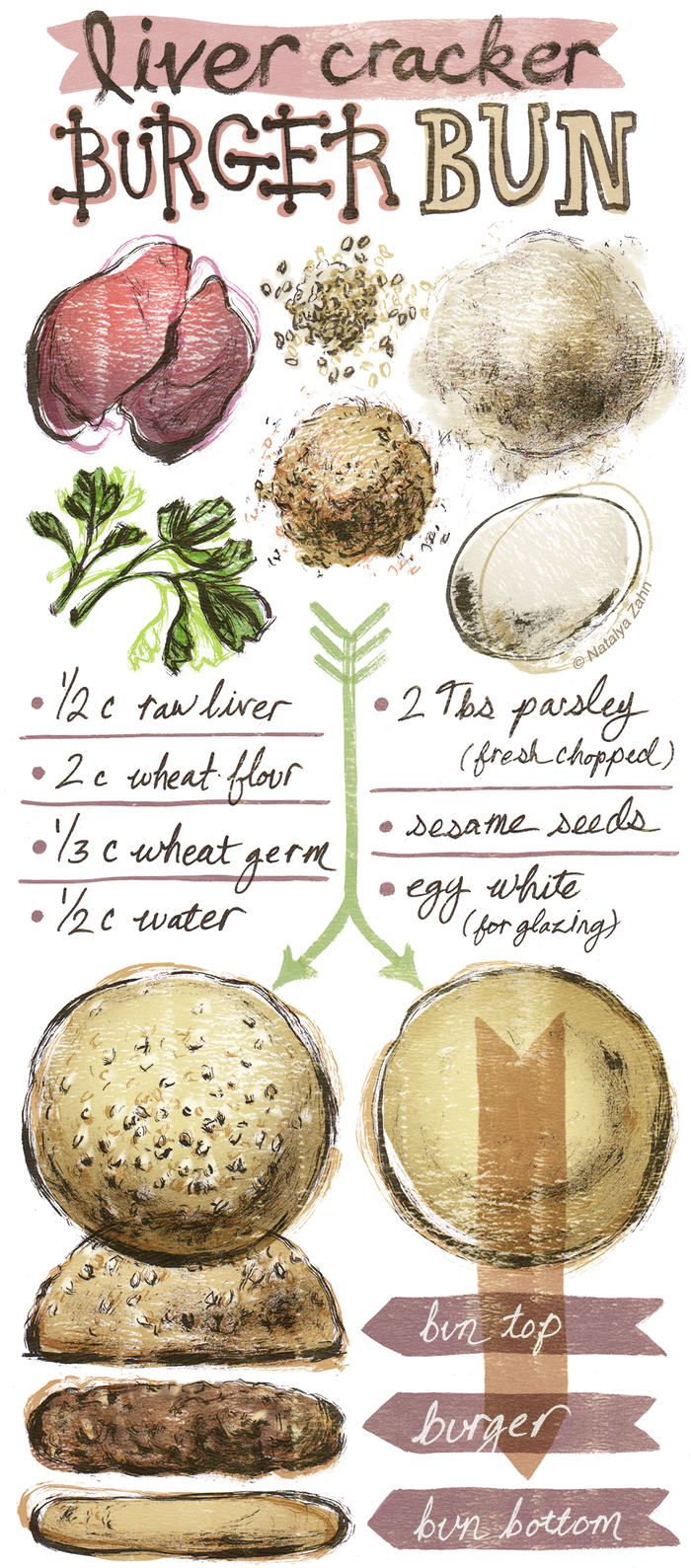 "Illustrated Recipe for Dog ""Liver Cracker"" Hamburger Buns"