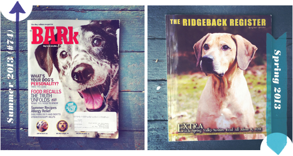 dog magazines The Bark and The Ridgeback Register