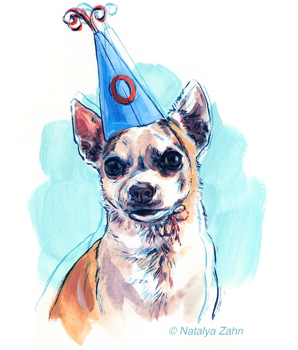 Chihuahua dog in a birthday hat