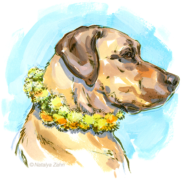 Oscar the Rhodesian Ridgeback - dandelion necklace how-to