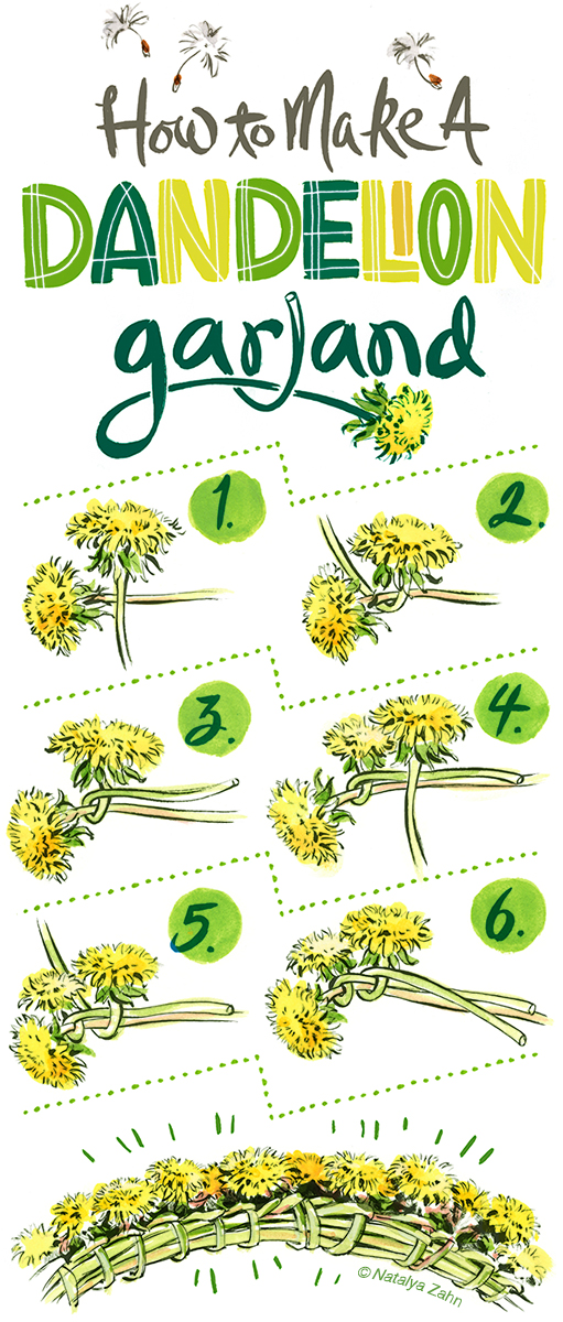 How to make a Dandelion Crown or Garland