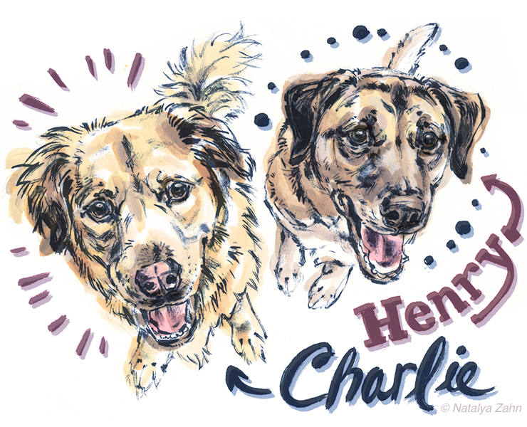Illustrated portrait of Henry and Charlie, rescue dogs