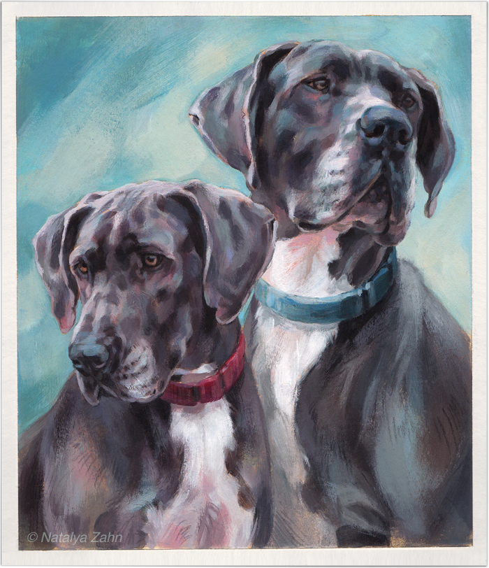 Great Dane dog portrait by Natalya Zahn