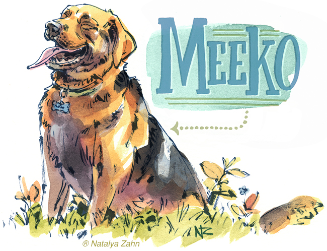 Illustration of Meeko the shepherd mix, mixed breed dog