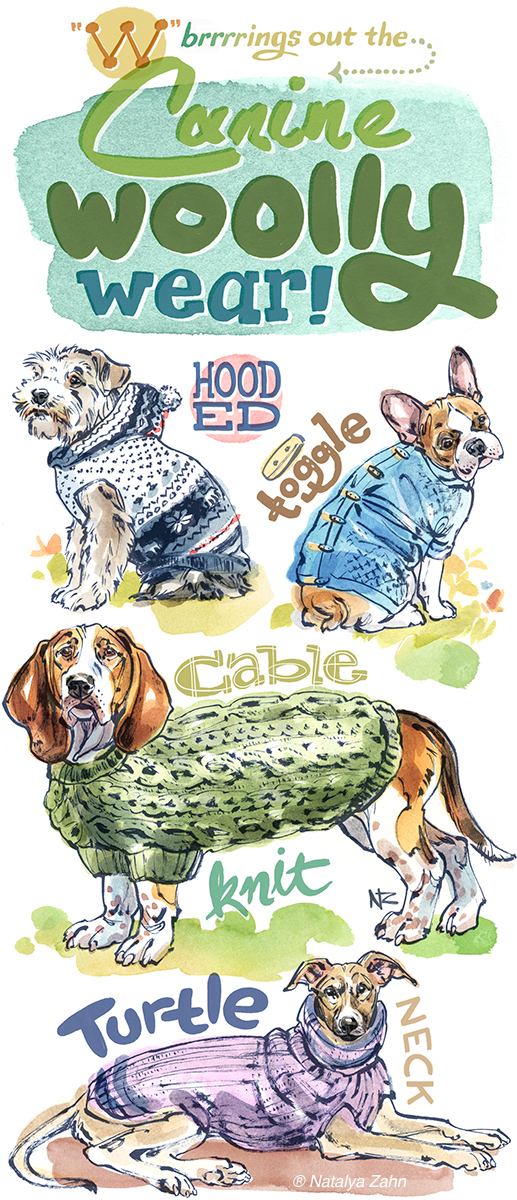 Illustration of wool dog sweaters and coats